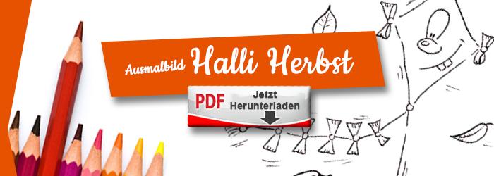 Halli laesst gern Drachen steigen als Ausmalbild PDF herunterlanden